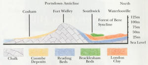 Geology of Portsdwon diagram
